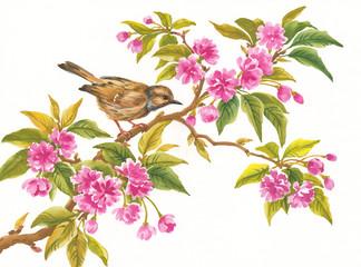 Акварельные цветы, птица на цветущей ветке.