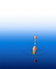Fishing Bobber in the water.