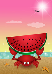 Funny crab with watermelon on the beach