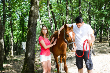 happy young couple taking care of horses outdoor in summertime