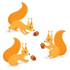 squirrels with acorns