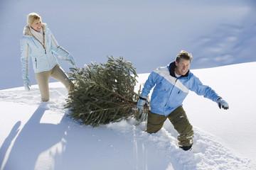 Paar mit Weihnachtsbaum im Schnee