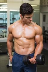 Shirtless muscular man exercising with dumbbells