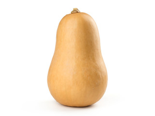 butternut squash isolated on white background