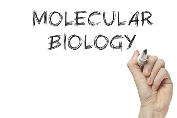 Hand writing molecular biology