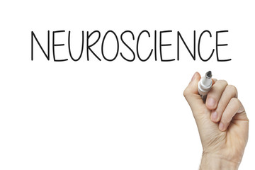 Hand writing neuroscience
