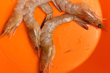 Raw shrimp on orange background.