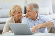 Senior couple websurfing on internet with laptop - 67958419