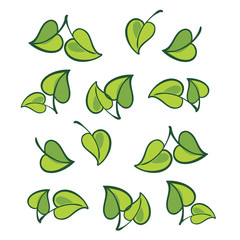 Vector leafs, isolated