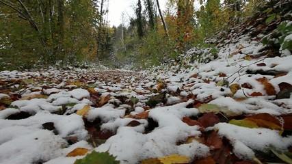 Travelling Première neige 1