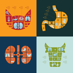 Set of veterinary flat icons