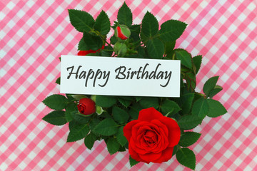 Happy birthday card with wild roses on pink checkered cloth