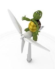 tortoise with wind turbine