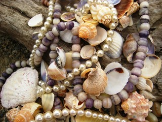 Purple Stone Beads with Shells on Beach
