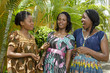 Three Happy African women Chatting Outdoor