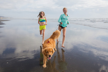 two kids and a dog running at the beach