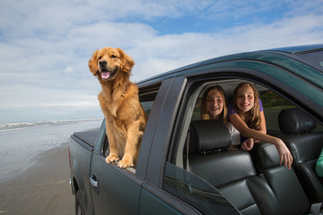 road trip with the dog and kids