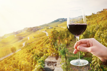 Glass of red wine. Lavaux region, Switzerland