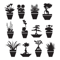 pot plants  garden flowers  and  herbs - Illustration