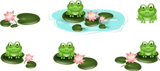 Set of cute green frogs on waterlily