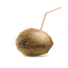 coconut on white background with cocktail straw