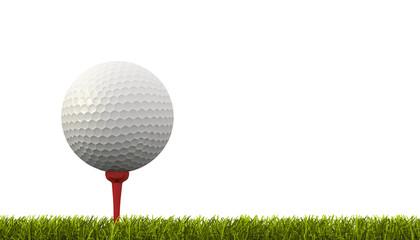 pallina da golf su campo