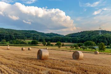 Countryside Summer Sunset Landscape