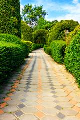 Pathway in garden design.