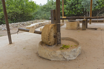 Ancient technology of olive oil production in Israel.