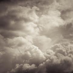 sky (95)