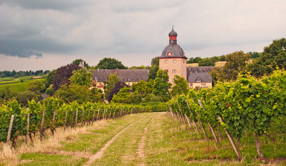 Schloss Vollrads in Rheingau-Weinbergen im Sommergewitter