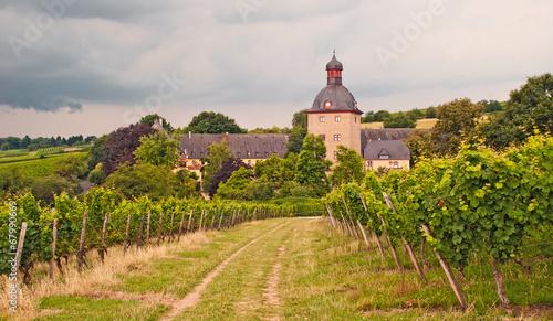 Schloss Vollrads in Rheingau-Weinbergen im Sommergewitter - 67990669