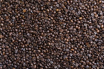 smooth surface of the coffee beans