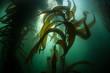 Leinwanddruck Bild - Forest of Giant Kelp