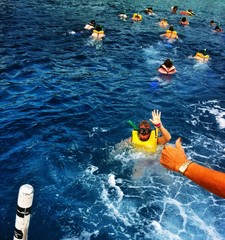 group of people snorkling in the sea with a hand sign OK