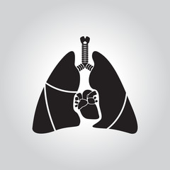 Heart and lung icon (Flat design)