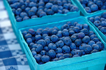 ripe blueberries in produce boxes
