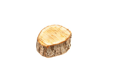 Tree stump on white background