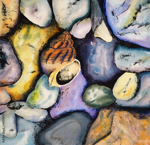 Watercolour and Indian Ink Painting - Shell with Pebbles - 68011838