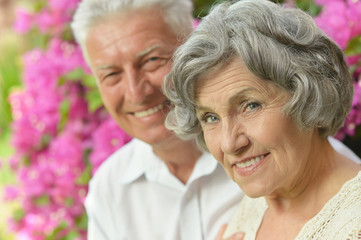 Elder couple on pink flowers