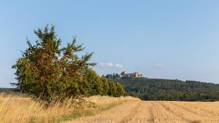 Bavarian Countryside Summer Landscape