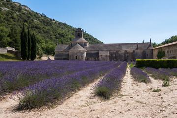 abbaye Sénanque