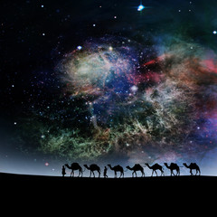 camels in the stars sky background.