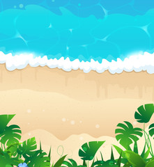 Tropical ocean shore