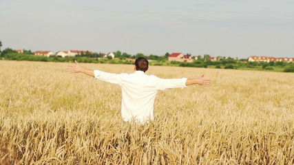 Happy man running in wheat field, super slow motion, 240fps