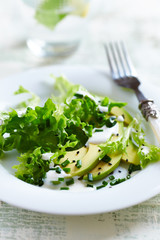 Avocado and Endive Salad with Yogurt Dressing