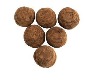 Delicious Hazelnut Truffles on a white background
