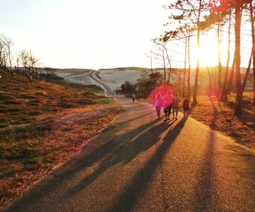 Chemin dune
