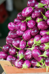 Pile of eggplants on market