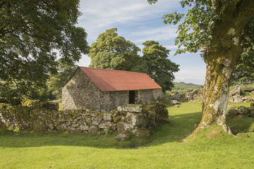 Dartmoor Barn.